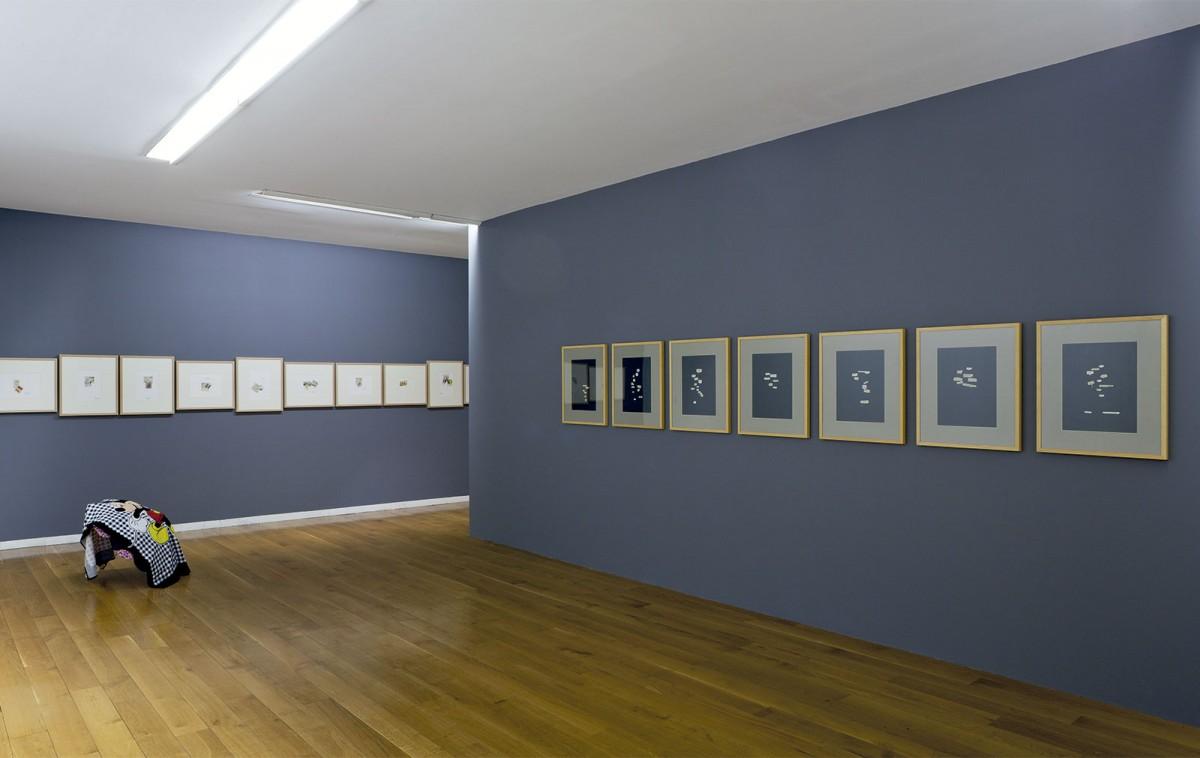 Vista da exposición Chelo-Matesanz. As miñas cousas en observación, CGAC, Santiago de Compostela, 2014. Fotog. Mark Ritchie