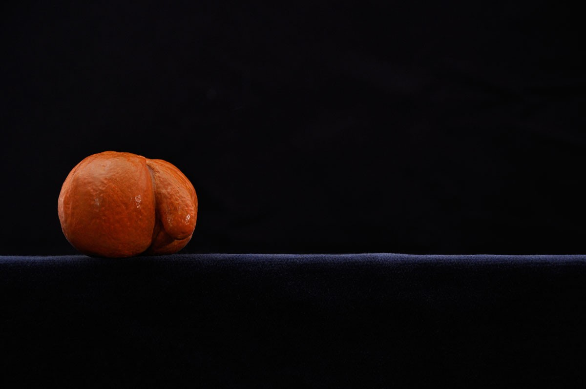 Zanahoria, 2004. Bronce pintado.