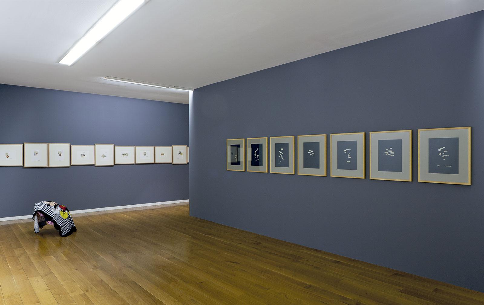 Vista da exposición Chelo-Matesanz. As miñas cousas en observación, CGAC, Santiago de Compostela, 2014. <small>Fotografía Mark Ritchie</small>