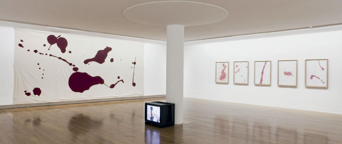 Vista da exposición As miñas cousas en observación, CGAC, Santiago de Compostela, 2014. Fotografía Mark Ritchie